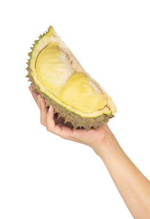 slice of durian isolated on white background