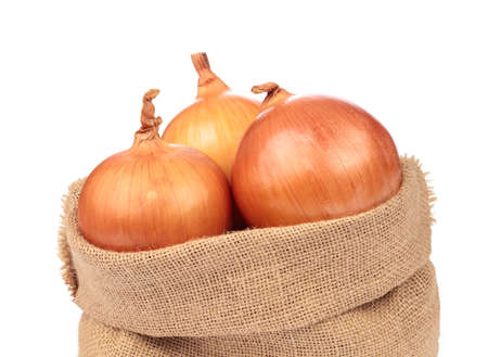 fresh onion in burlap sack bag isolated on white background