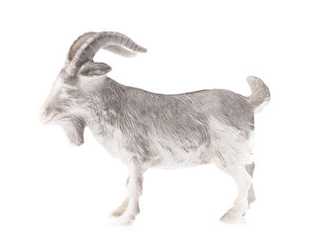 Goat toy made of plastic isolated on white background