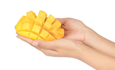 hand holding cubes and slices mango isolated on white background