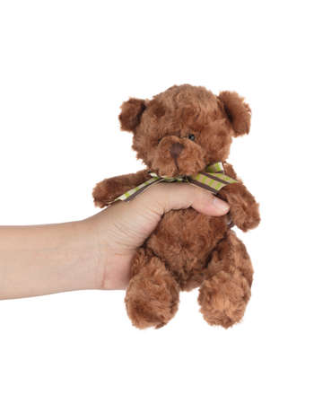 Hand holding teddy bear doll isolated on white background.