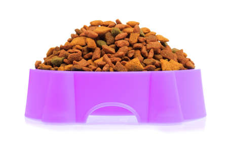 purple plastic bowl full with dog food isolated on white background