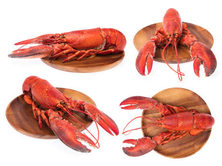 Collection of Lobster on wood plate isolated on white background. Archivio Fotografico