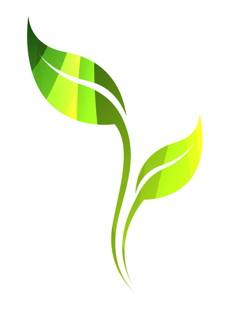 green line: Vector green spring leaf isolated on white. Color eco icon.