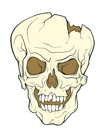 The skull of a grinning vampire. Vector color illustration of a tattoo style isolated on a white background. Illustration