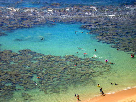 Snorkelers and Families swimming around the coral at Hanauma Bay, Oahu, Hawaii photo