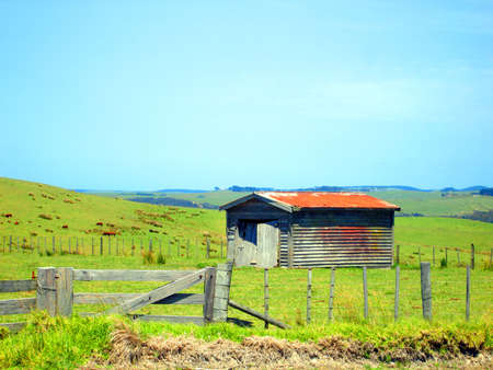 Rustic Farm Fence and Shed with cattle grazing in far field, Northland, New Zealand photo