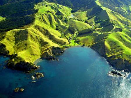 aerial animal: Northland Coastline Aerial, New Zealand