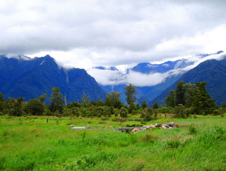 Low clouds covering Mount Cook and Mount Tasman.  (Lake Matheson walkway with small bridge in foreground)