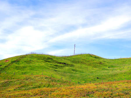fenceline: Fences alone hills marking field boundaries. Rotorua, New Zealand.