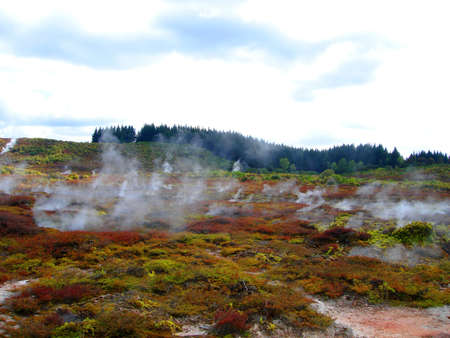 Geothermal Activity of Hell's Gate (between Rotorua and Taupo), New Zealand
