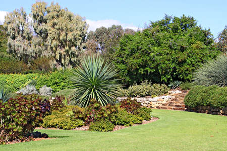 groundcover: Formal Garden with Beds of Succulent Plants Stock Photo