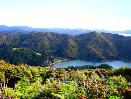 Looking down into Oramas Bay, Great Barrier Island, New Zealand