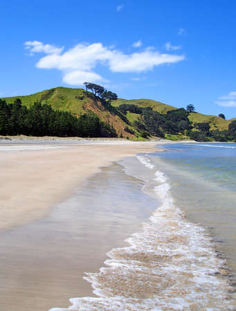 barrier: Whangapoua Beach, Great Barrier Island, New Zealand