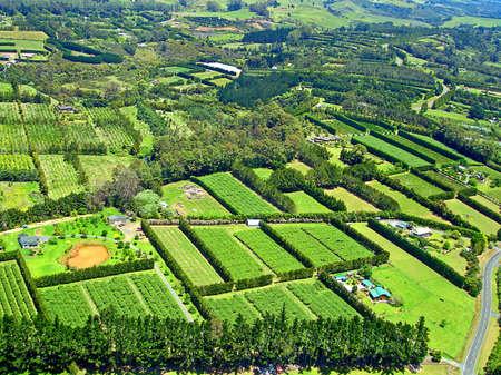 Paihia, 베이 오브 아일랜드, 뉴질랜드 근처 농업의 공중보기