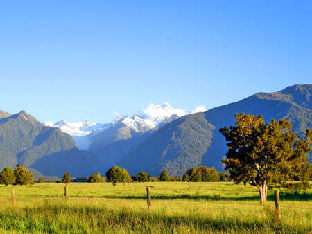 Evening light over a grassy field in front of Mount Cook and Mount Tasman, New Zealand