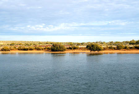 An Outback Shore, Port Augusta  top of Spencer Gulf , South Australia