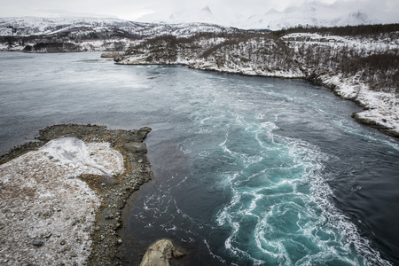 vortices: Whirlpools of the maelstrom of Saltstraumen, Nordland, Norway