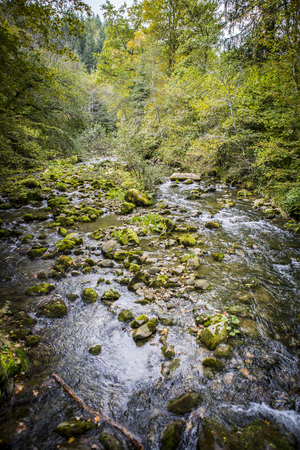 torrent: Torrent, river running through the mountain