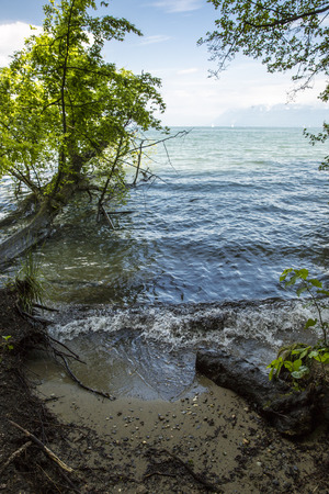 leman: View on the geneva lake - lac Leman - on a sunny day; Stock Photo