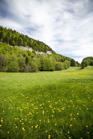 landscape of Jura mountain with blooming green meadow, Switzerland