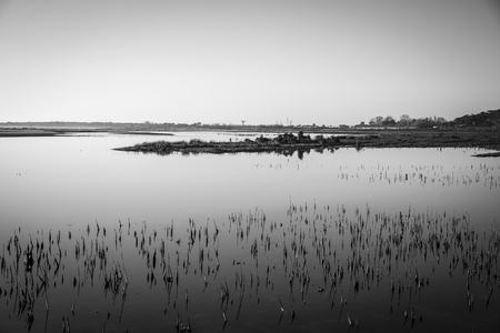 black and white image of lagoon at nature reserve Casse de la Belle Henriette recovered after sea went over the dike after the storm Xynthia in February 2010 Stock Photo