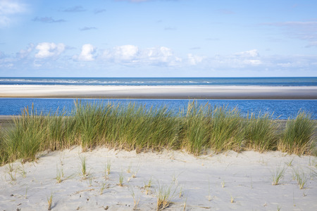 sand dunes with grass and a beach, Ameland Island, The Netherlands