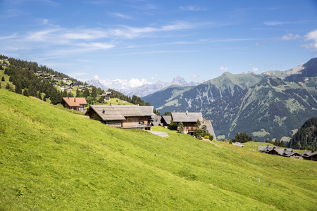 Bucolic green summer alpine landscape, Swiss Alps mountain massif, canton du Valais, Switzerland