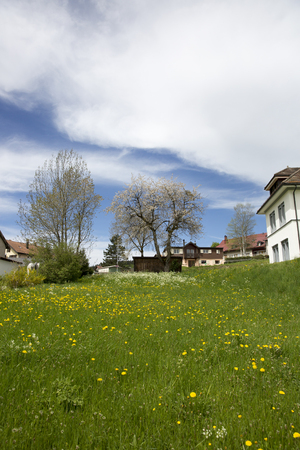 landscape of Jura mountain with blooming green meadow and chalets, Switzerland Stock Photo