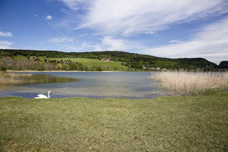 landscape of the Brenet Lake and Jura mountain, Le Pont, Switzerland
