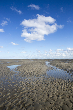 Maritime landscape with blue sky white clouds and pattern in the sand, Waddenzee - Wadden Sea, Friesland, The Netherlands