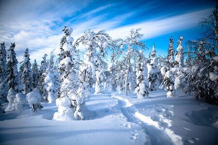 Scandinavian Landscape, Finland