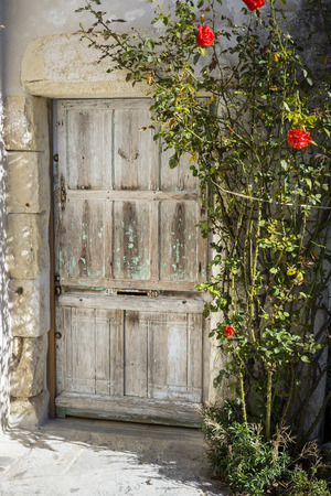 old wooden door: Old wooden door surrounded by foliage and red roses