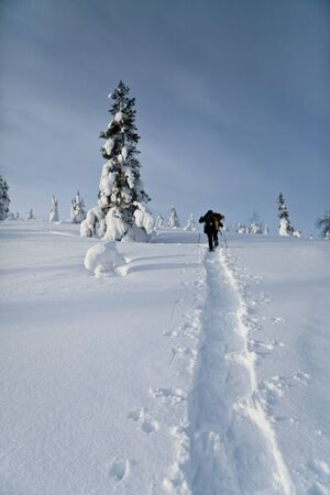Winter Finnish snowy lanscape Stock Photo