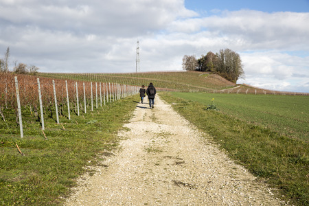 People wandering in an autumn swiss countryside  with wineyards Stock Photo
