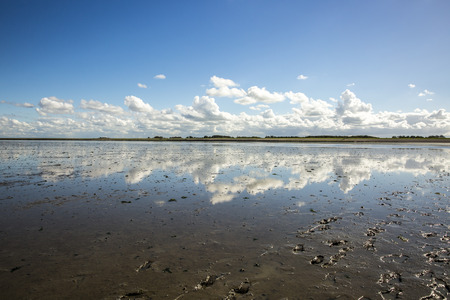 water ecosystem: Maritime landscape with reflection of clouds in low tide water, Waddenzee, Friesland, The Netherlands