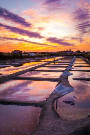 Panoramic view of the salt marshland at sunrise, Olonne area, Vendee, France