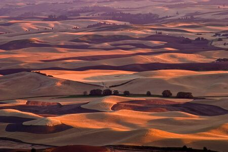 palouse: Palouse at sunset Stock Photo