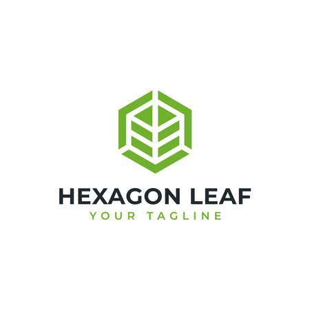 Hexagon Leaf, Eco, Garden, Botany, Nature Logo Design 向量圖像