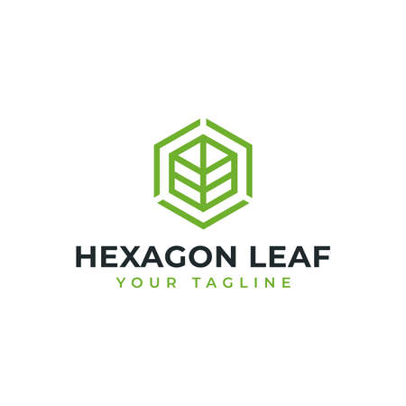 Hexagon Leaf, Eco, Garden, Botany, Nature Line Logo Design