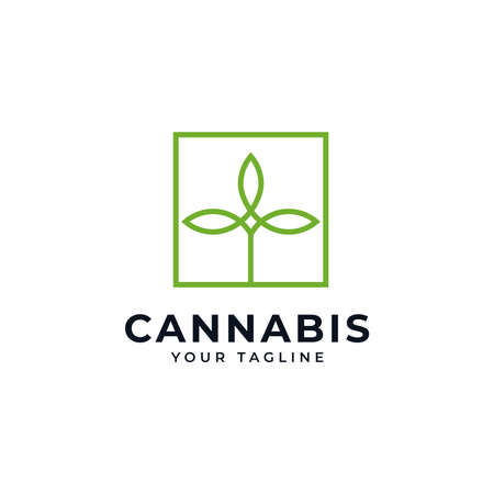 Square Cannabis Marijuana CBD Hemp Leaf Line Logo Design Template Illustration