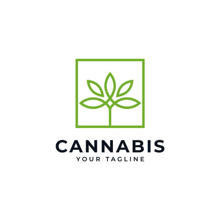 Square Cannabis Marijuana CBD Hemp Leaf Line Logo Design Template 向量圖像
