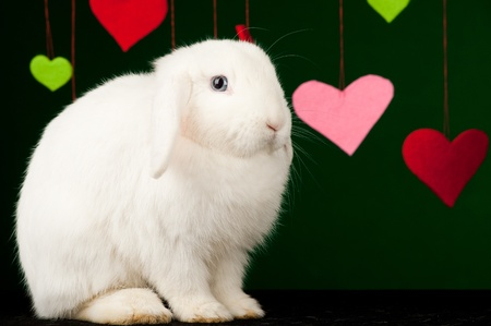 White valentines with colored valentines Stock Photo