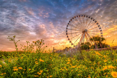 Sunset from the Boardwalk area of Myrtle Beach with wildflowers in the foreground Stock Photo