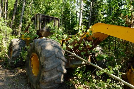 Grapple Skidder on Logging Site