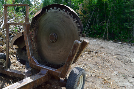 slasher: Log Slasher Cutoff Saw on Landing Stock Photo
