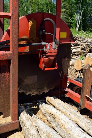 kerf: Log Cut Off Saw Stock Photo