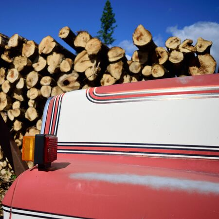 Log Truck and Wood Pile