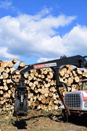 quaking aspen: Log Loader and Truck Front End