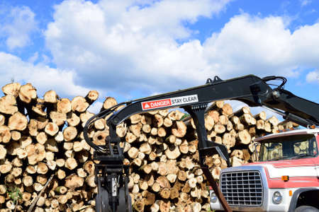 Log Truck with Loader in Front of Pulp Pile